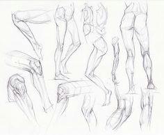 figuredrawing info news knee leg studies anatomy art leg anatomy human anatomy
