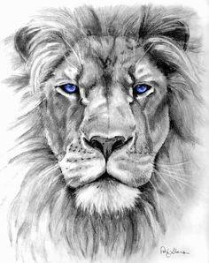 lion tattoo on pinterest