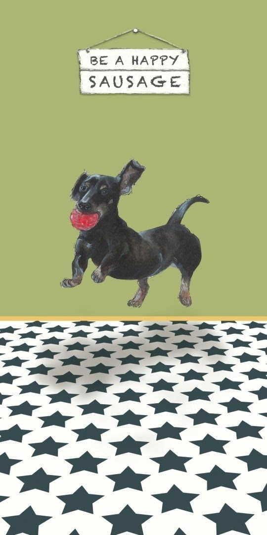 dachshund dachshund dachshund art dachshund puppies weenie dogs funny dachshund puppies