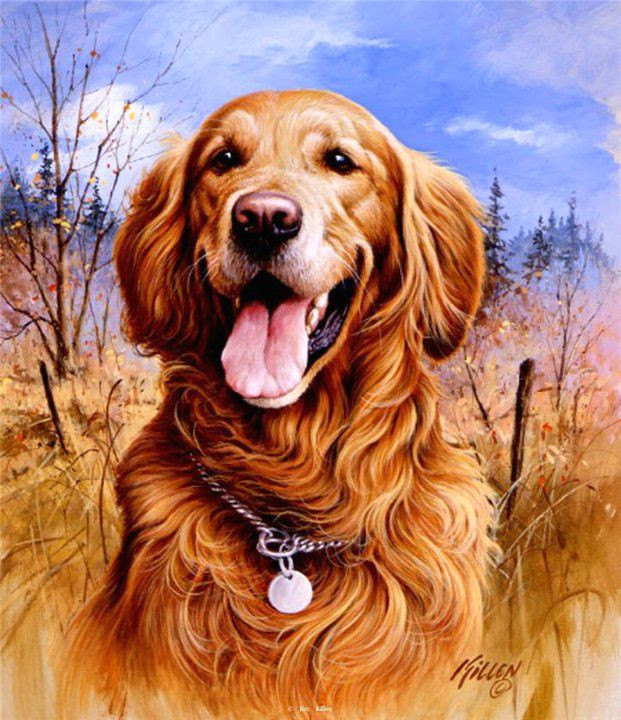 jim killen paintings golden retriever cartoon wildlife art cute dogs dachshund dog