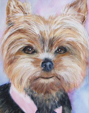 pin by evelyn kemmerer on yo paint ayorkie pinterest yorkie yorkshire terrier and dogs