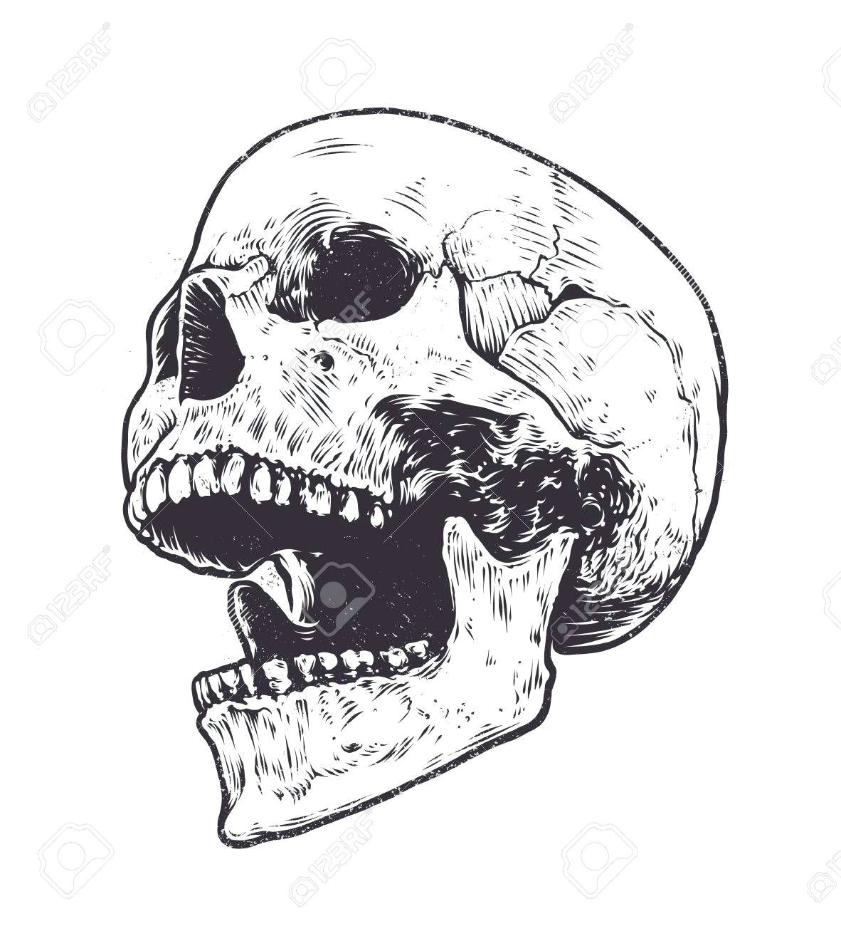 image result for skull open mouth drawing
