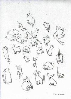cat illustrations translate to tattoos