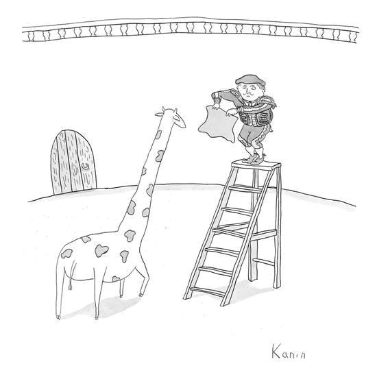 a matador on a ladder faces a giraffe new yorker cartoon premium giclee print by zachary kanin at allposters com