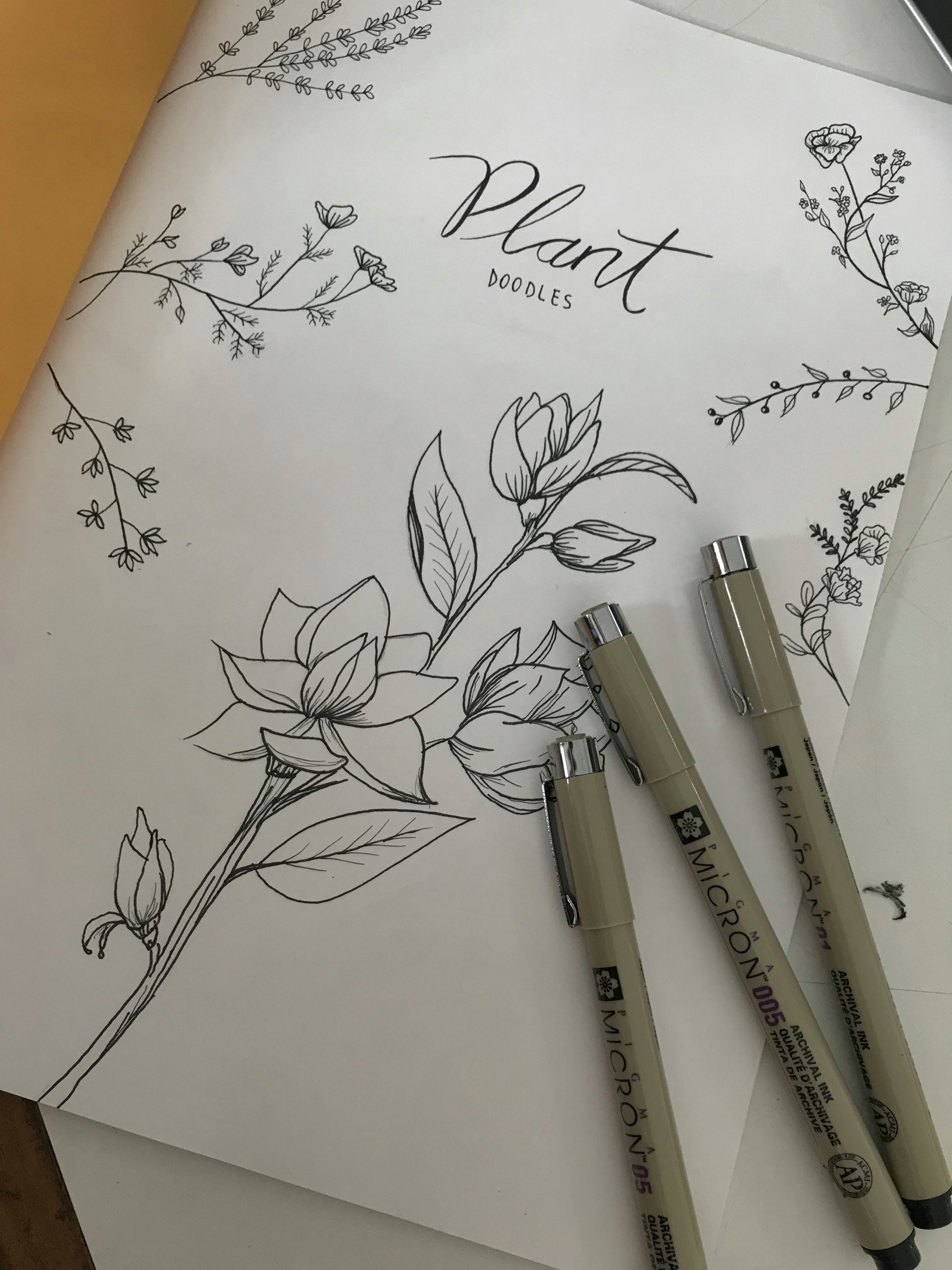 plants doodles plants draw botanical botanicalillustration micron hobbie clean flower