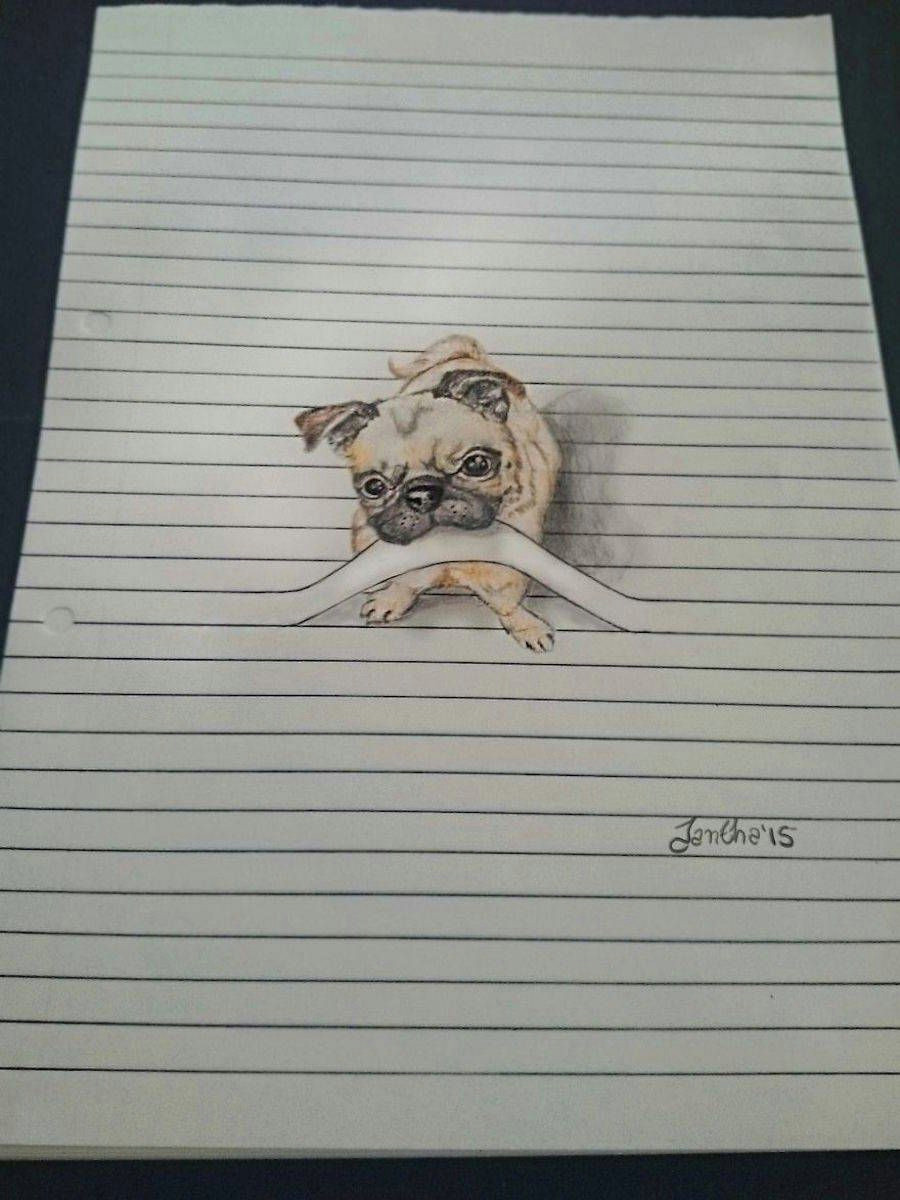 south african illustrator iantha naicker presents us her cute animal illustrations she uses the lines of her notebook to give a tridimensional aspect to