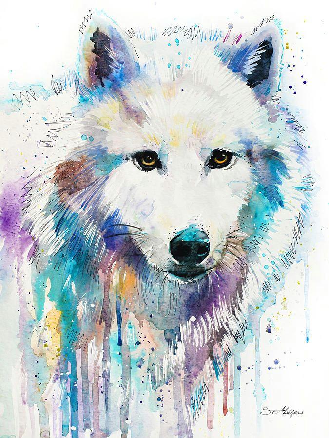 arctic wolf slavi aladjova fineartamerica com