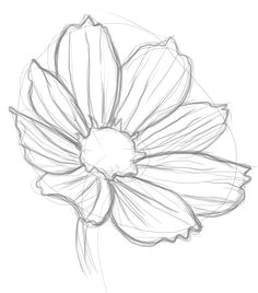 how to draw flowers more easy to draw flowers