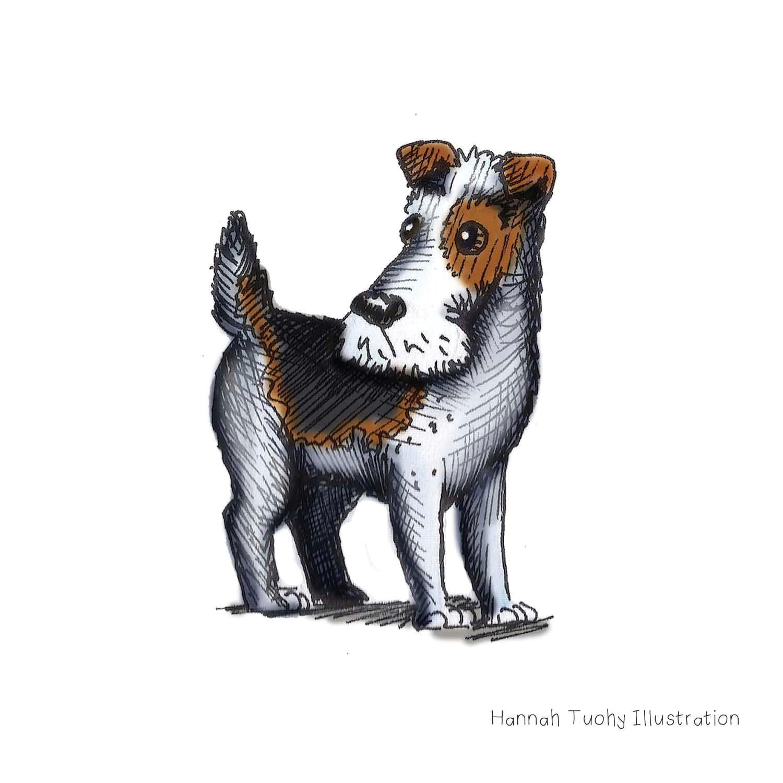 hannah tuohy illustrator dogbarkingvideo dog barking blue dog line drawing dog art