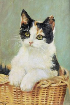 adorable calico kitten in basket painting