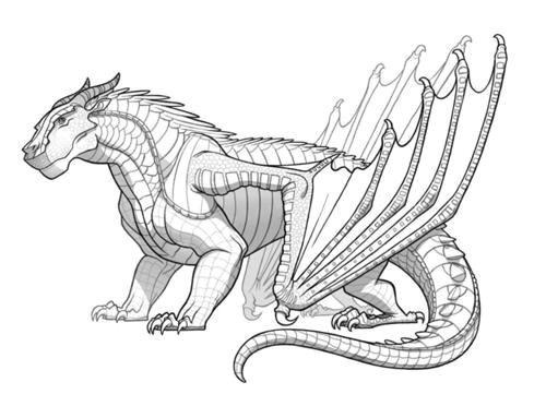 500px mudwing jpg 500a 383 fire drawing wings of fire
