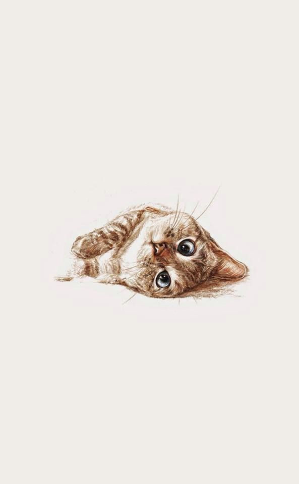 pretty sure this is nala cat cool art wallpaper drawings cats