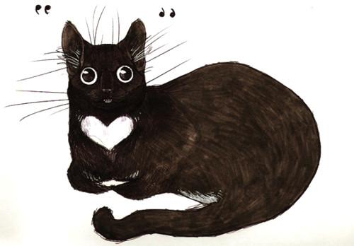 cat drawing art