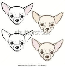 image result for how to draw a chihuahua chihuahua drawing chihuahua art dog paintings