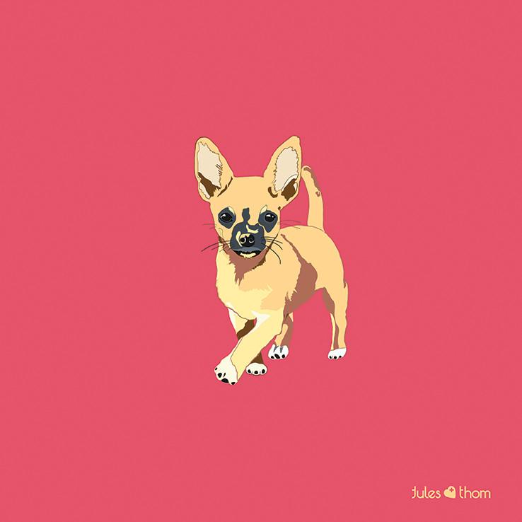 jean carroll chihuahua dog doggo thedoggocollection illustration popart drawing aluminumprint julesandthom quote dogquotes adoptdontshop