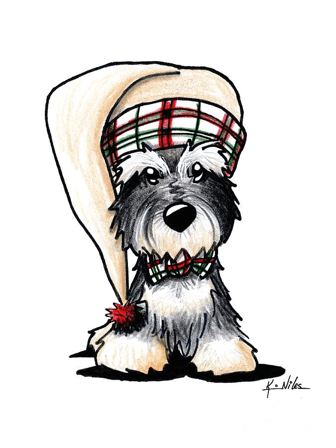 christmas dog with hat schnauzer drawing winter schnauzer by kim niles