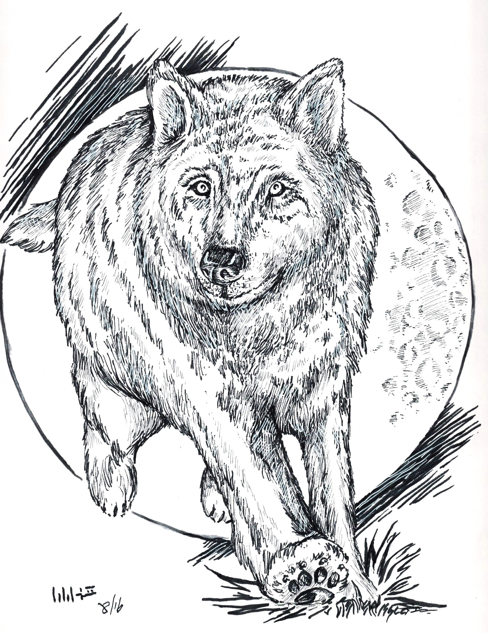 wolf running in the moonlight i was inspired to draw this by a lot of