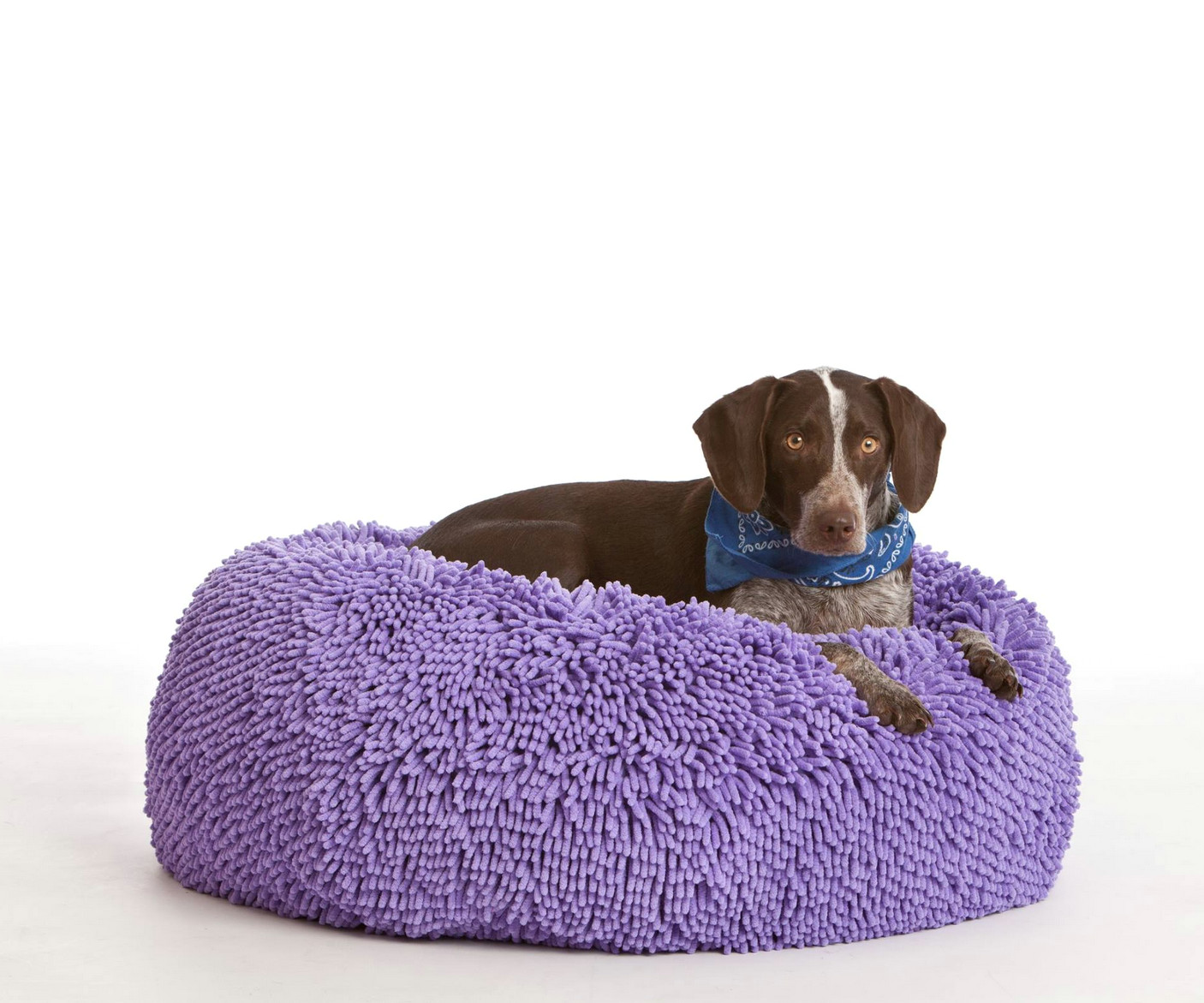 my dog loves this bean bag he lounges on it most of the day and no longer sleeps in the bed with me at night he chooses his bean bag customerreview