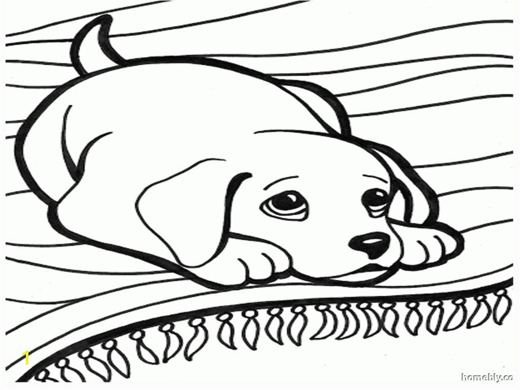 Drawing Of A Dog Black and White Fresh Black and White Dog Coloring Pages Nicho Me