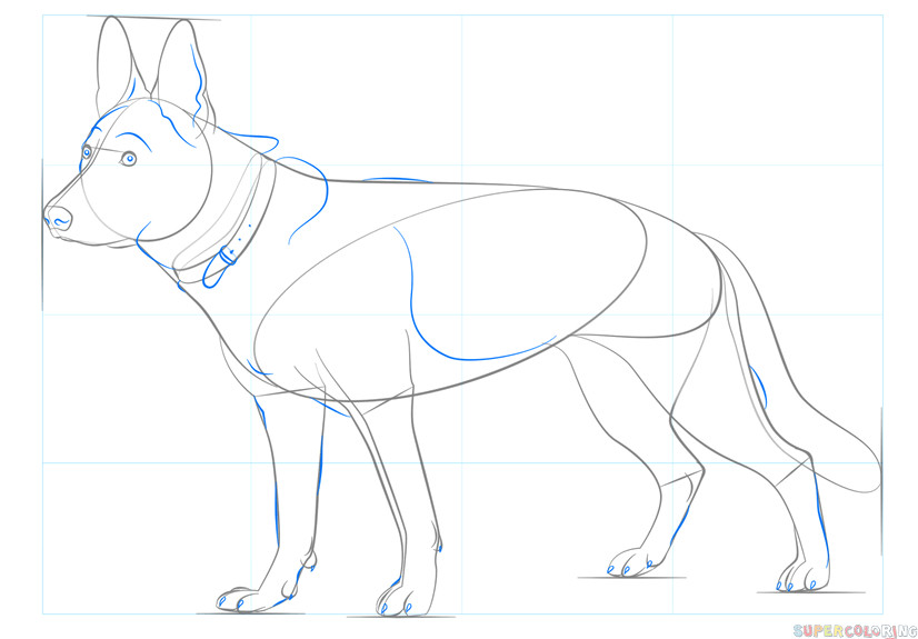 how to draw a german shepherd dog step by step drawing tutorials for kids and beginners