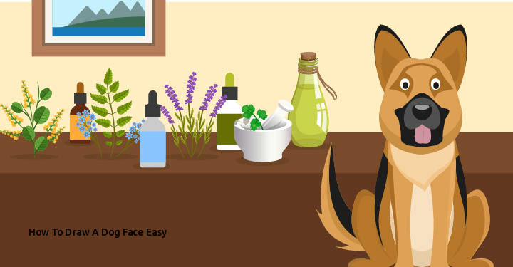 how to draw a dog face easy 20 natural reme s for dogs you didn t