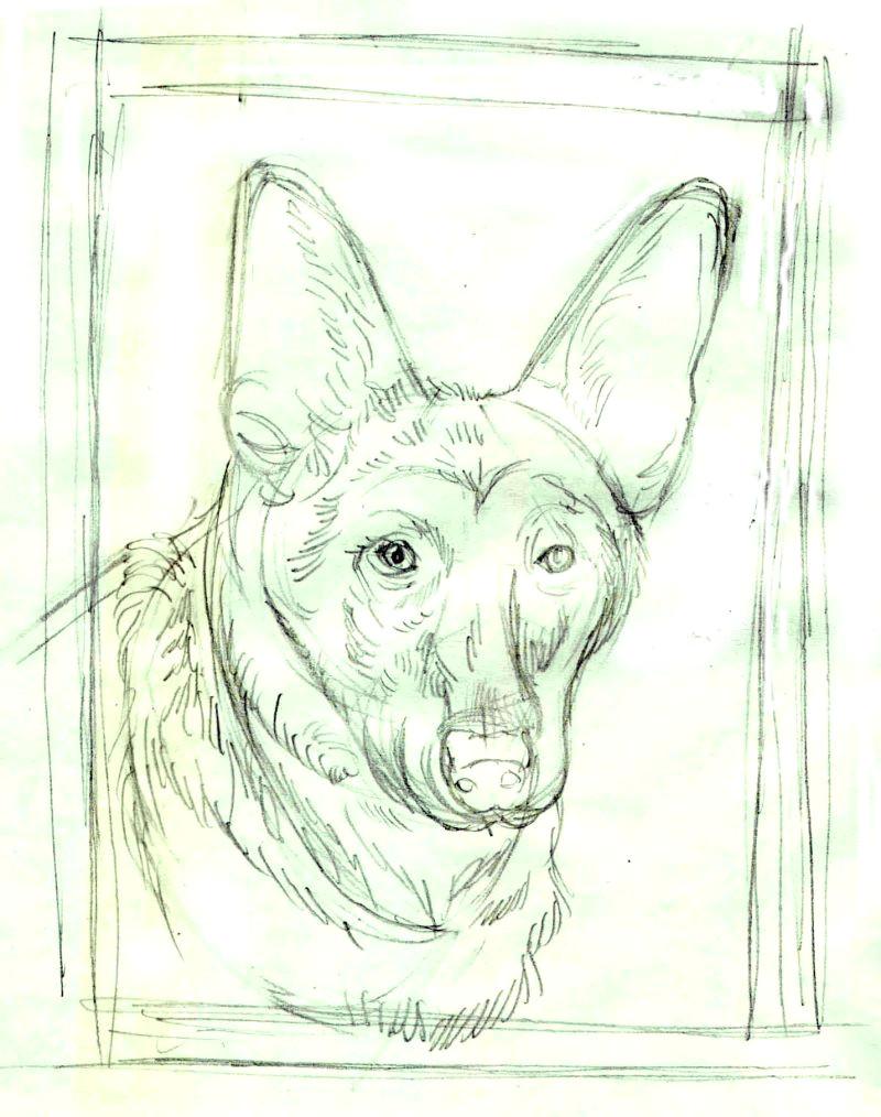 draw dog 3 56a26d683df78cf7727589ce jpg