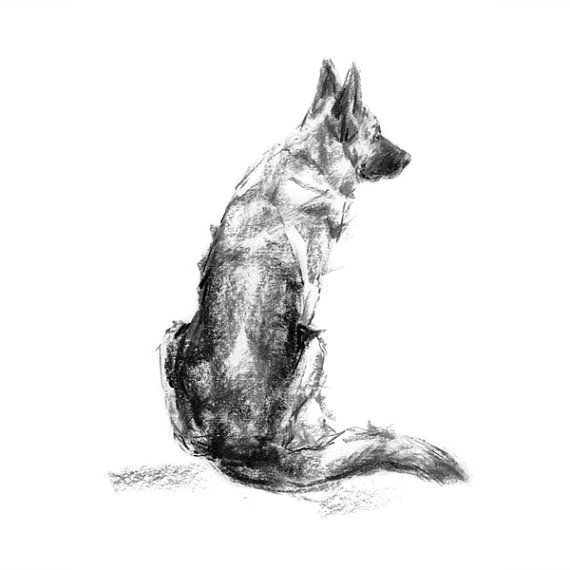 german shepherd dog sketch fine art dog print gsd gift