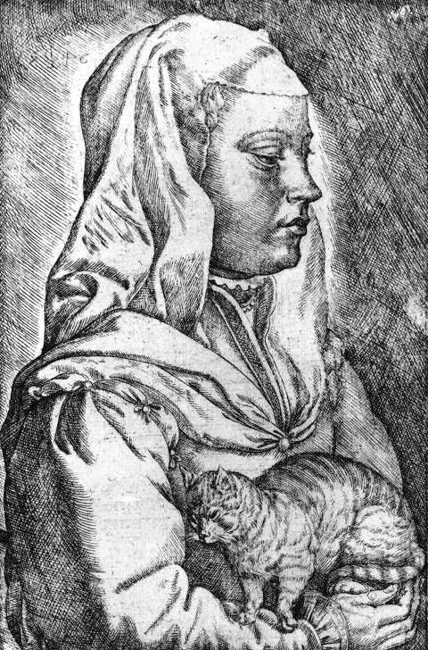 drawing of a woman wearing a head covering holding a kneeding cat probably getting covered in fur scan of 2 d images in the public domain believed to be