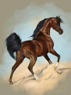 arabian horses in art