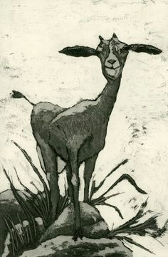 natural by mariann johansen ellis on etsy goats goat art etchings farm
