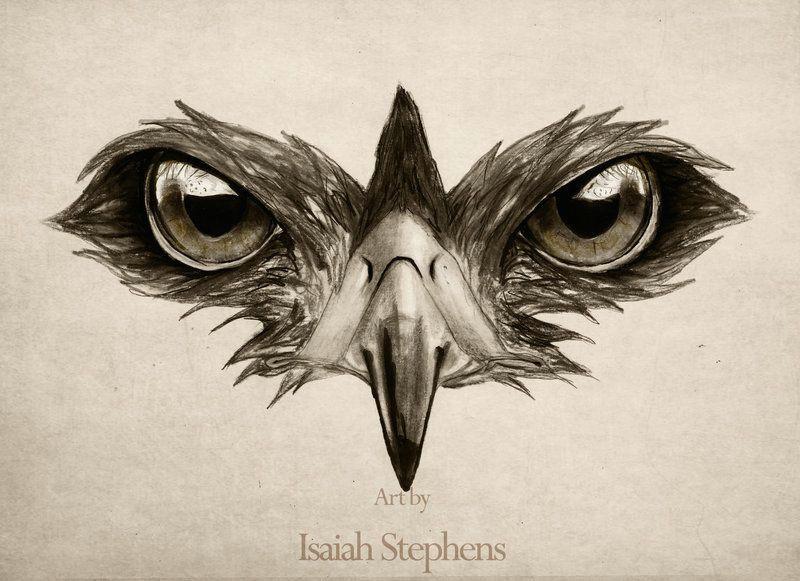 Drawing Of A Hawks Eye 394 Best Hawk Eye Images In 2019 Hawkeye Marvel Avengers Marvel
