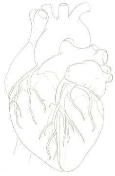human heart tattoo by metacharis on deviantart human heart tattoo heart anatomy tattoo