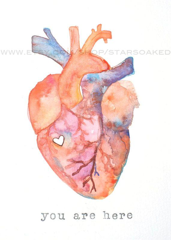 Drawing Of A Heart Human Anatomy Of Love Human Heart Watercolor Print Diy Inspiration