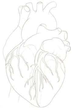human heart tattoo