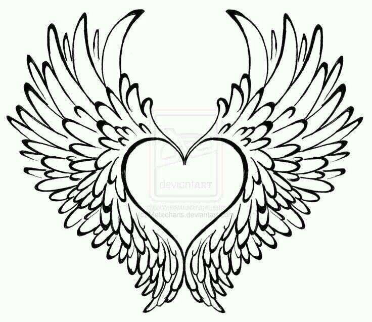 heart has wings