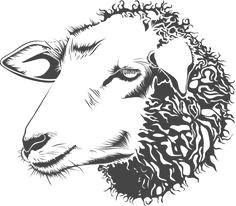 sheep illustration google search farm animals animals and pets sheep illustration pencil
