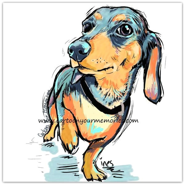 little dachshund cartoon your memories