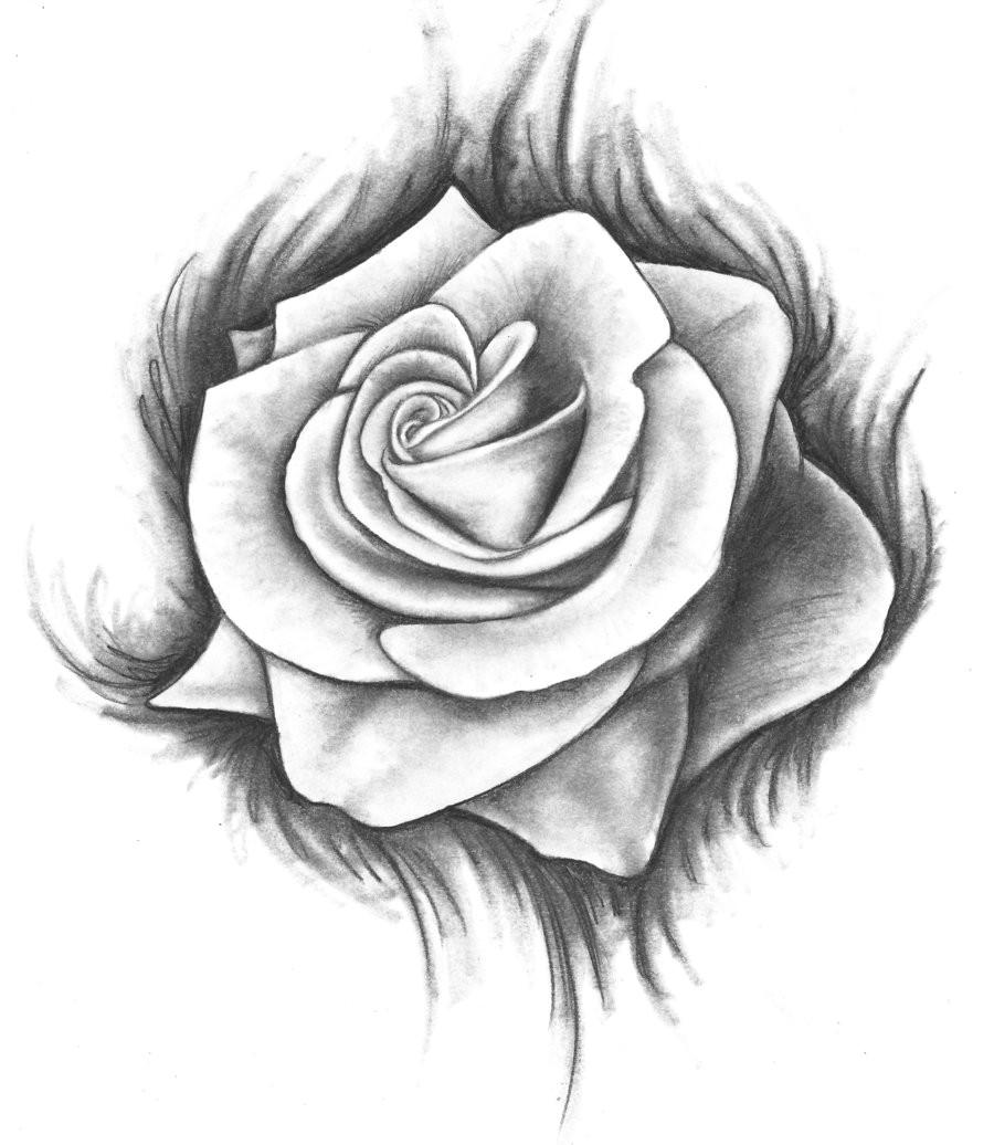 roses drawings