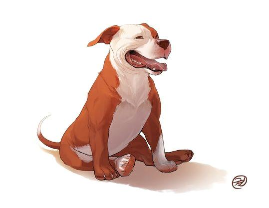 dog series pitbull by elisa kwon