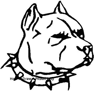 how to draw a pitbull easy 28 collection of pitbull dog face drawing of how to