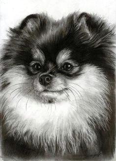 dog art fine art america