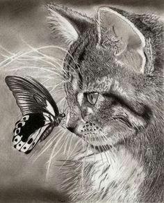cat drawing 5 cute cat drawing realistic cat drawing realistic drawings of animals