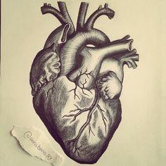 y medical illustration illustration artists brain tattoo anatomy sketches heart tattoo designs