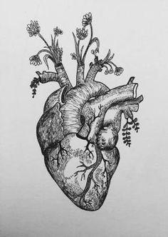 human heart tattoo heart flower tattoo heart anatomy tattoo real heart tattoos