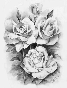pencil drawing roses croquis drawing skills drawing sketches shading drawing sketching