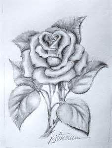 simple pencil drawings of roses bing images rose sketch rose drawing pencil flower
