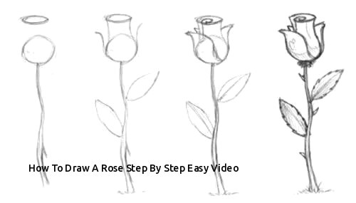 Drawing Of A Rose Easy How to Draw A Rose Step by Step Easy Video Easy to Draw Rose Luxury