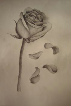 dying rose tattoo meaning