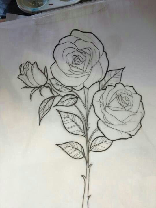 rose outline drawing rose drawing tattoo tattoo sketches tattoo drawings drawing sketches