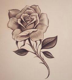 early early morning rose inkdmonkey yahoo com losangeles westcoast mycrazylife rose southbay rosesketch pencil sketch chango